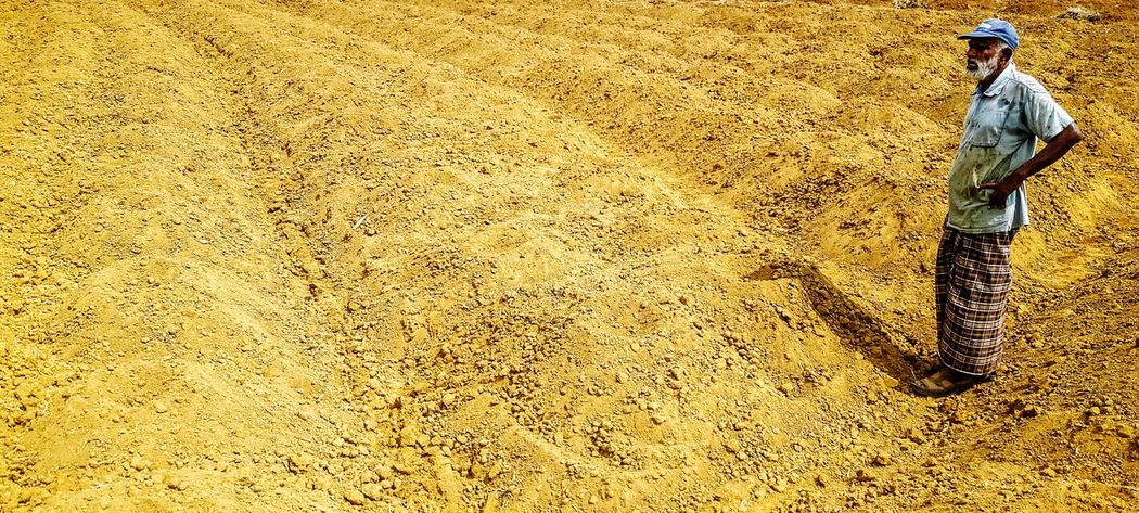 Agriculture Sun Textured  Mud Farm Farm Life Agriculture Way Agriculture Pattern Outdoors Day India Tapioca Soil Beauty In Nature Rural Scene Nature Sky Tree