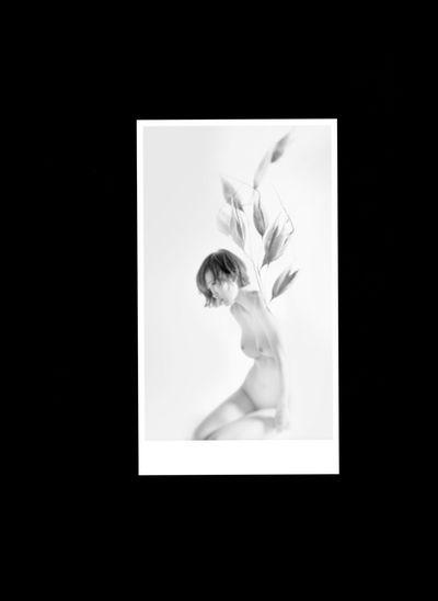 The Seeds Of Doubt Mystères Des Femmes Type Faces Demolition Stories Photographic Approximation