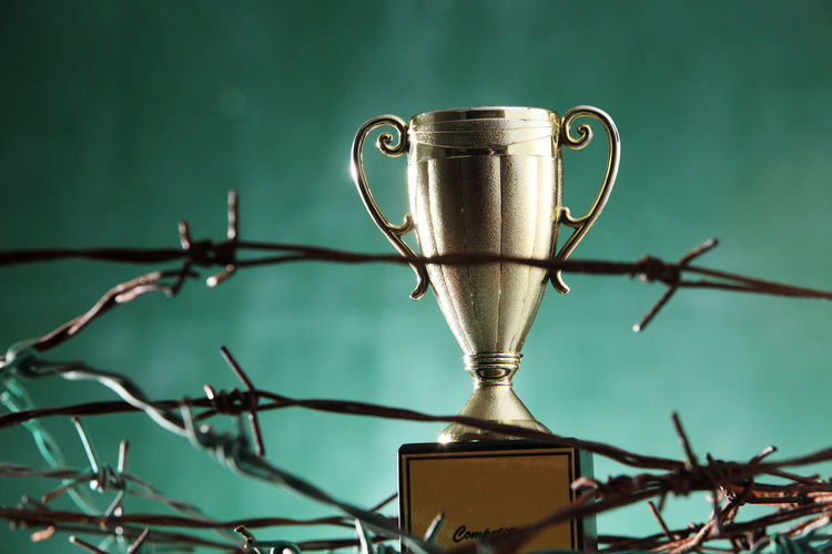 Trophy Amidst Barbed Wire
