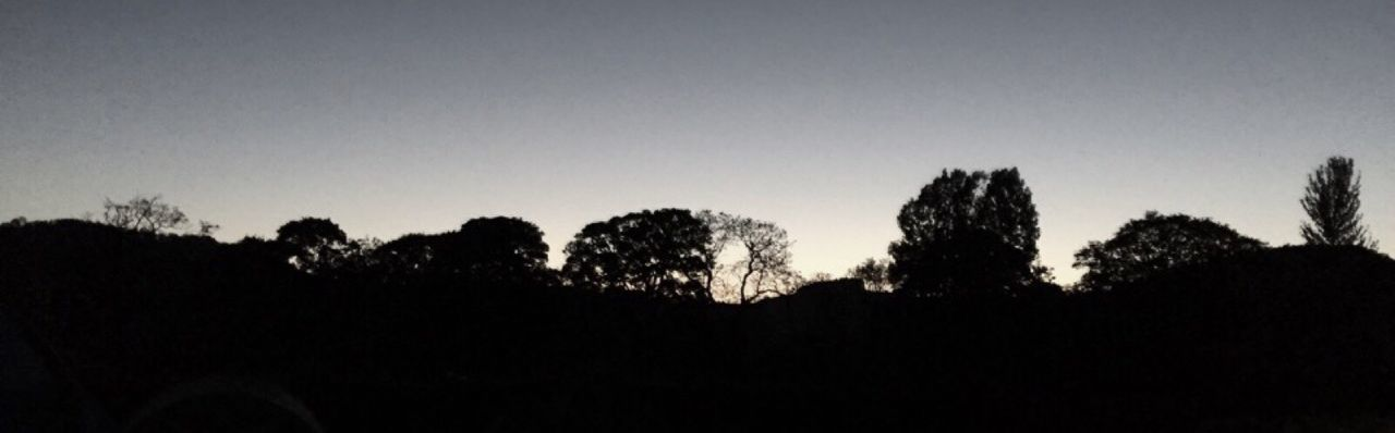 Silhouette trees on landscape against sky