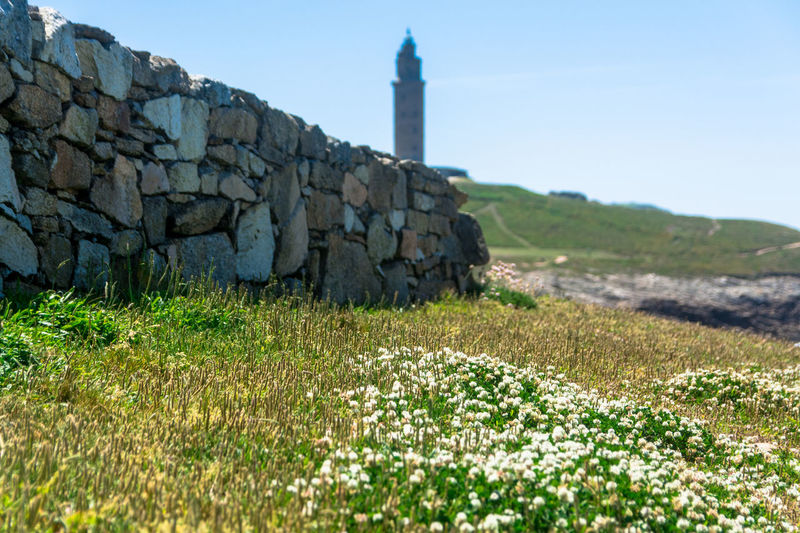 Stone Wall Park Meadows Hercules Tower Blue Sky Landscape_photography Wild Flowers La Coruña EyeEm Nature Lover From My Point Of View Sunny Afternoon