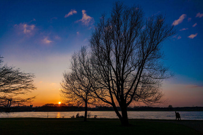 Deutschland Duisburg Duisburg Ruhrort NRW Rhein Rheinufer Sunlight Bare Tree Beauty In Nature Branch Clouds And Sky Germany Landscape Nature No People Outdoors People Scenics Silhouette Sky Sunset Tranquil Scene Tranquility Tree Water