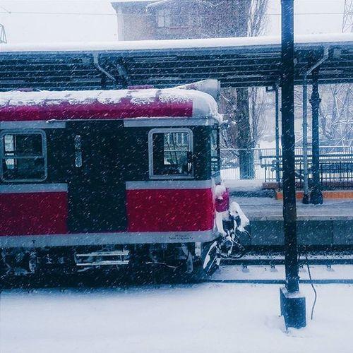 Sopot Polska Zima śnieg Pociag Winter Train Ilovesopot Igersgdansk Igerspoland Vscotricity Vzcotricity Vscopoland VSCO