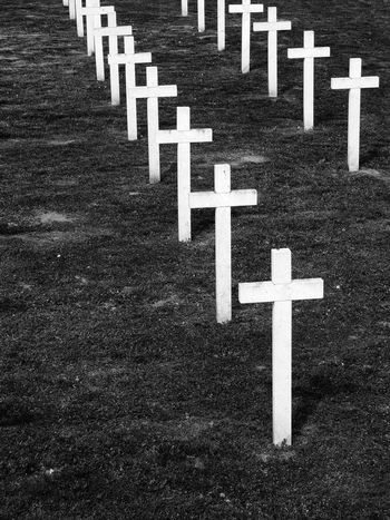 Black And White Cemetery Death Homeland War In A Row LINE Memorial Memories Outdoors Repetition Sadness Vukovar Croatia War White Crosses Monochrome Photography