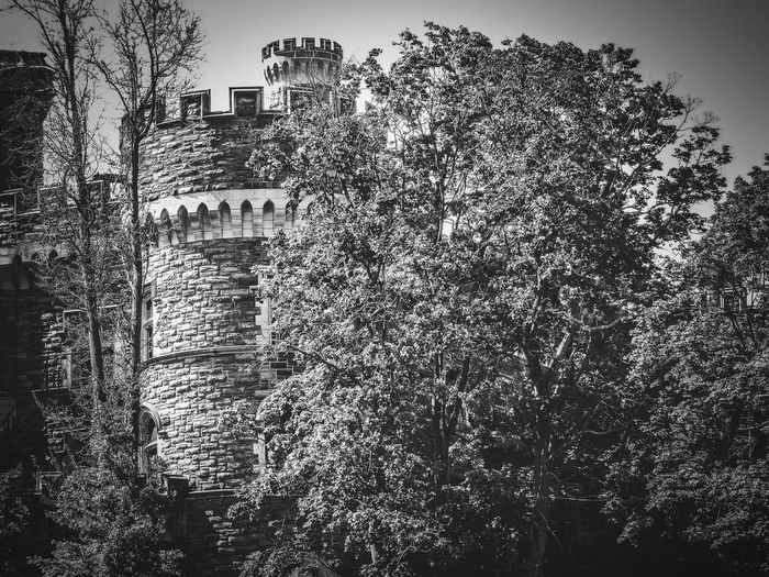 Building Exterior No People Architecture Built Structure Outdoors Sky Day Castle Trees Arcadia University Black And White