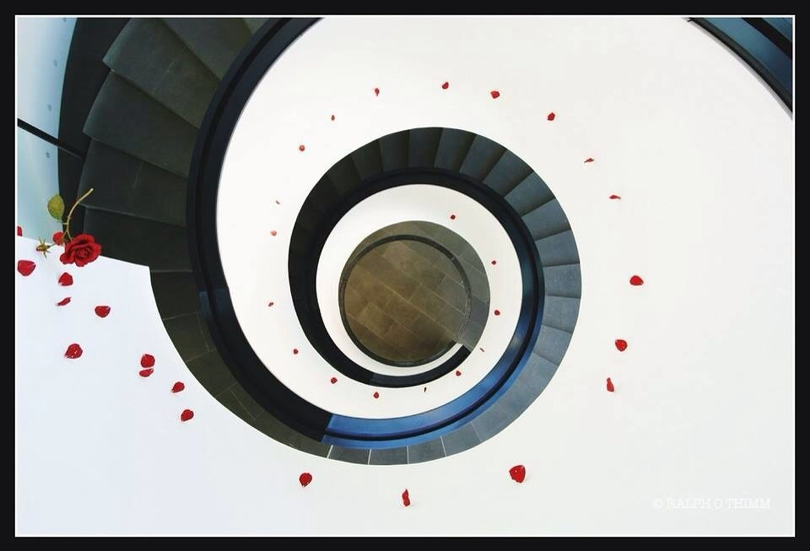 transfer print, circle, indoors, auto post production filter, built structure, geometric shape, spiral, directly above, steps and staircases, steps, railing, staircase, spiral staircase, architecture, close-up, high angle view, low angle view, no people, red, shape