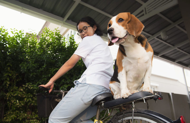 Portrait of woman with dog sitting on bicycle