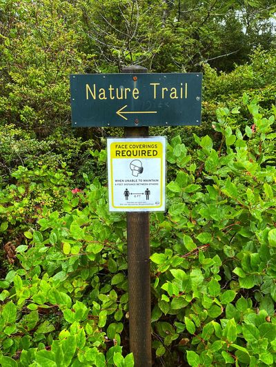 Information sign by plants