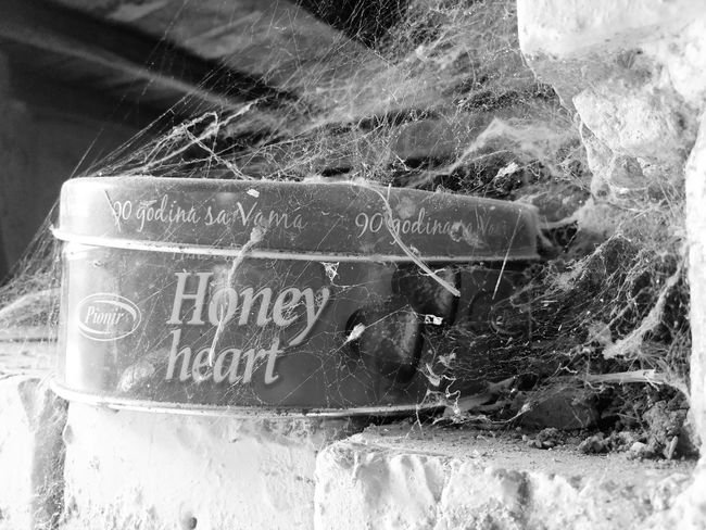 Until death tear us apart. Cobweb Chocolate Chocolatebox Chocolate Box Pralines Praline Close-up Spiderweb Web Spider Web Old Blackandwhite B/W Photography Black And White Black & White Close-up Arachnid