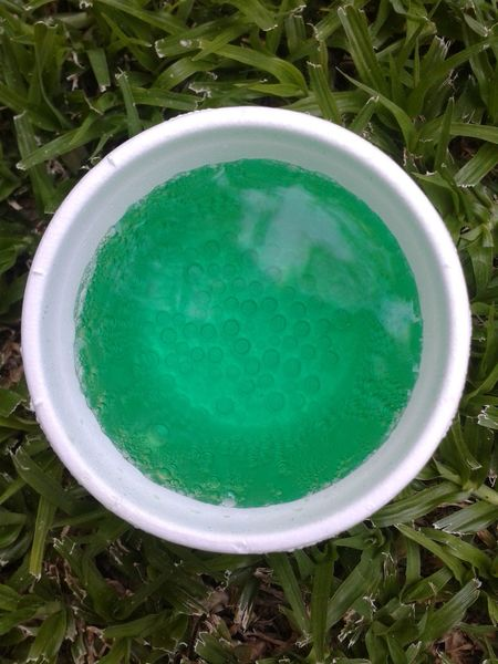 green bubbly drink CreamSoda Bubbles Soft Drink Green Color High Angle View No People Grass Directly Above Day