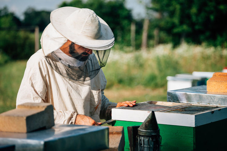 Side view of beekeeper examining beehive on land