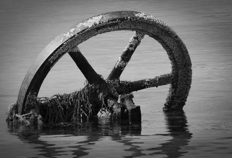 Oksfordhamn,Nordreisa Norway PENTAX K-30,smc PENTAX-DA★ 300mm F4ED [IF RAD Rost Algen Horizon Over Water Nature No People Outdoors Reflection Water