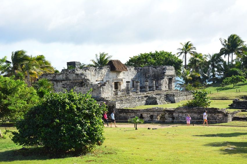 tulum Naturephotography Ruinas Arquitecture Arqueology Tulum Riviera Maya Architecture Tree Building Exterior Built Structure Outdoors Day No People Sky Nature