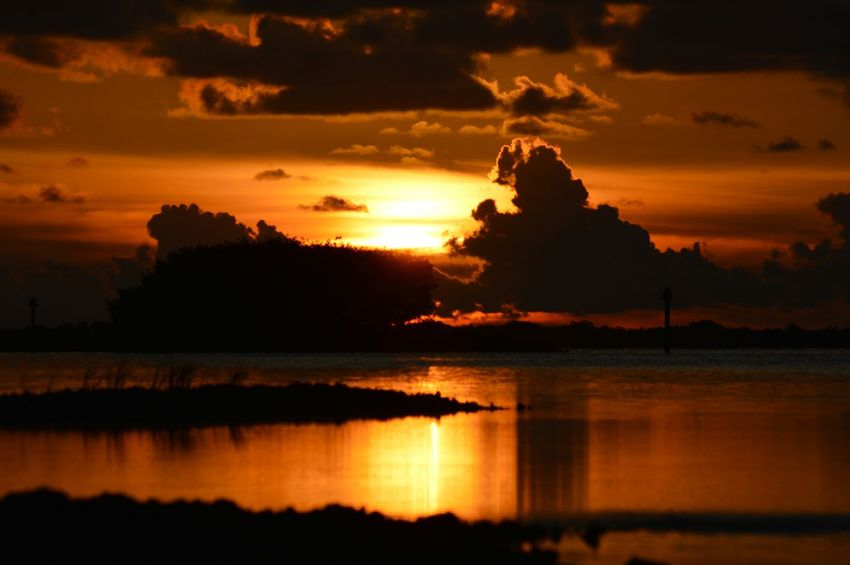 Sunset Outdoors The Purist (no Edit, No Filter) No People No Edit/no Filter Landscape Nature Reflection Sky And Clouds Water Florida United States Silhouette Light And Shadow Trees The KIOMI Collection The Great Outdoors - 2016 EyeEm Awards 43 Golden Moments Beauty In Nature Clouds And Sky Coastal Dusk Light And Shadows Hidden Gems  Bokeelia