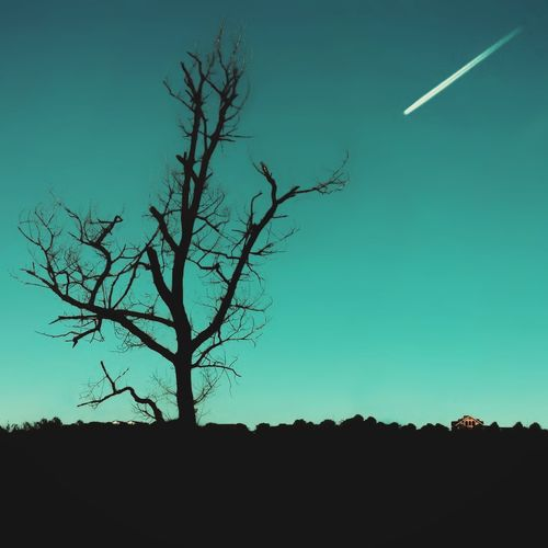 The Week On EyeEm Tree Bare Tree Moon Landscape Silhouette Night Clear Sky Sky Beauty In Nature No People Branch Nature Outdoors Adipix Visual Caucasus Cherkessk