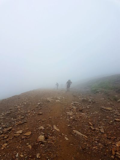 Fog Nature Wet Outdoors Beauty In Nature Reach The Summit Into The Mist Misty Path Snowdon Near The Top Snowdonia North Wales Family Walks Mountain Peak The Great Outdoors