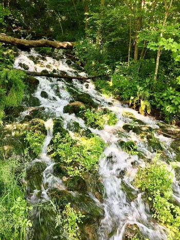 Big Springs Flowing Water Waterfall Water Nature Beauty In Nature Moss Natural Spring Water Motion Green Color Freshness Geodes Geode Naturalspring Waterfalls Tranquility Rocks Rocks And Water Natural Spring Flowing Water Tranquil Scene No People The Great Outdoors - 2017 EyeEm Awards Out Of The Box Sommergefühle The Week On EyeEm