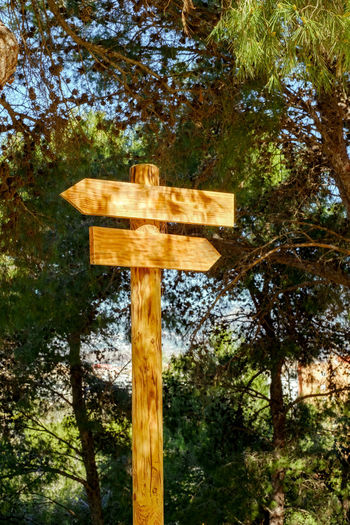 Wooden direction signs on a pole in the forest Directional Sign Close-up Cross Day Direction Direction Sign Low Angle View Nature No People Outdoors Religion Sky Tree Wood - Material Wooden Sign Wooden Sign Post