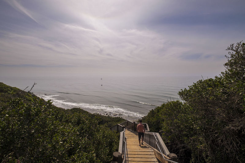 Man on Stairs leading down to private beach Beach Beauty In Nature Day Horizon Over Water Nature No People Outdoors Scenics Sea Sky Tranquility Tree Water