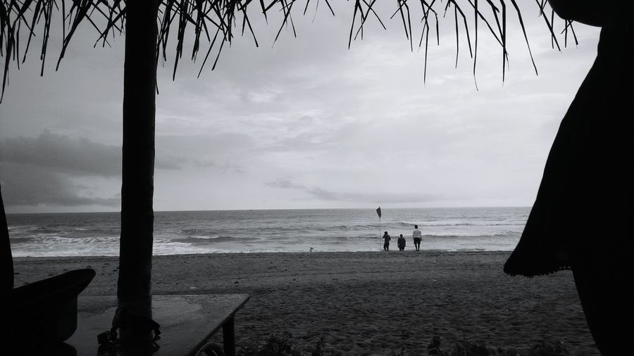 Monochrome Photography balck and white Horizon Over Water Beach Water Sea Relaxation Shore Calm Coastline Beauty In Nature Ocean Nature Scenics Sky Solitude Sea Horizon Over Water Water Beach Tranquil Scene Palm Tree Tranquility Vacations Scenics Relaxation