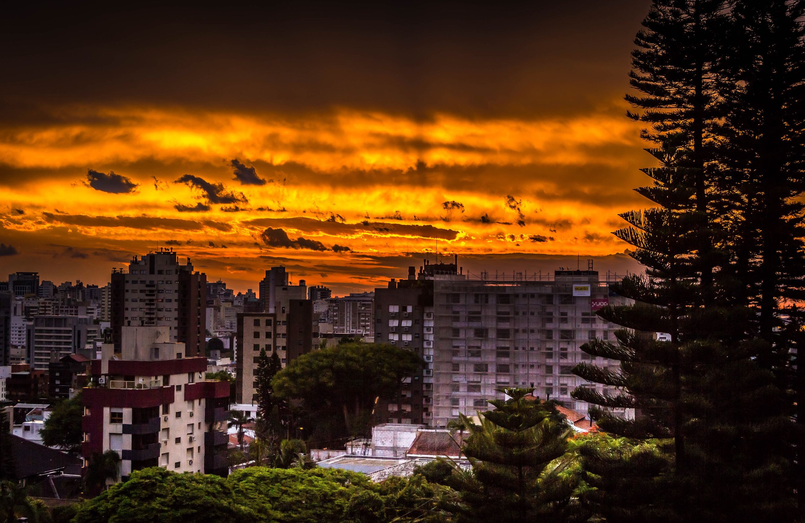 cityscape, urban skyline, sunset, city, building exterior, architecture, skyscraper, travel destinations, built structure, cloud - sky, business finance and industry, no people, dramatic sky, tree, sky, outdoors, scenics, nature