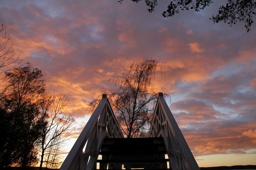 Beautiful Sky Neustrelitz Sky And Clouds Stairs Stairway Stairways To Heaven StairwaytoHeaven Architecture Bridge - Man Made Structure Built Structure Cloud - Sky Connection Day Low Angle View Nature No People Outdoors Sky Stairway To Heaven Stairway To Light Stairways Sunset Tree