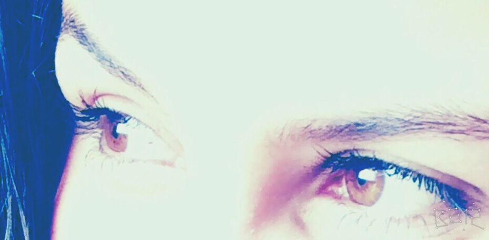 Eyes Are Soul Reflection Eyes Eyes On YOU!! Eyes Never Lie Pretty Eyes Eyeselfie Eyesbrown 😉😍👀