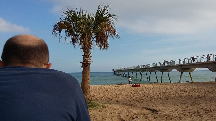 My Point Of View Palm Tree Sea Rear View Beach Water Sky Relaxation One Person Day Tranquility Horizon Over Water Outdoors Only Men Sand Badalona Bridge Pont Del Petroli, Badalona, Spain What Who Where Neighborhood Map