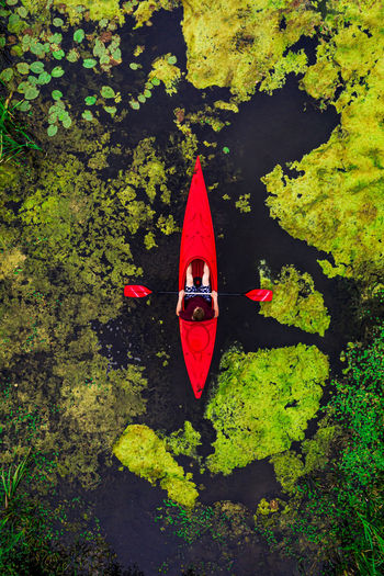 High angle view of red floating on water
