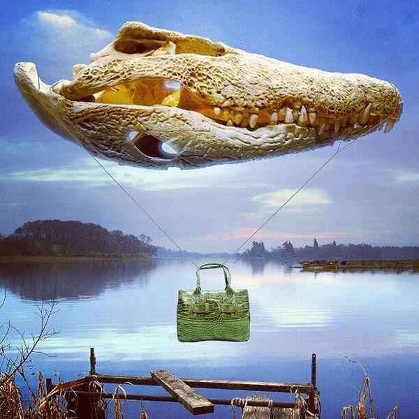 Lake of Menteeth. Scotland Trossachs Aberfoyle