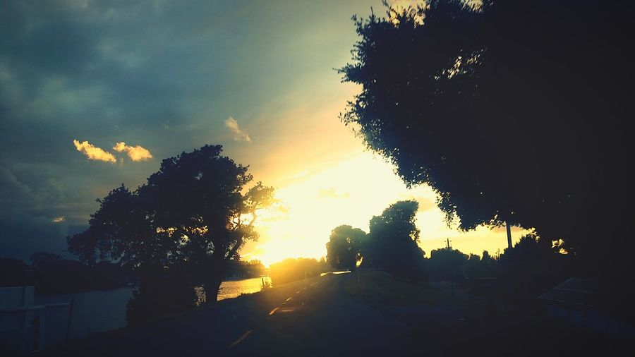 Sun Down Sun Through The Trees Sunday Driving With My Love Silhouette River Road Delta Towns California Cali Life Calisky Norcal Smartphonephotography Sunday Drive Sun Through The Clouds