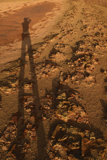 Daylight Shadow Sunlight Sand Focus On Shadow High Angle View Pattern Outdoors Nature Men Day People Crack Cracked Cracks Crackers Cracker Cracked Ground Cracked Earth Check This Out Beauty In Nature Nature Close-up Sunlight Shadows & Lights