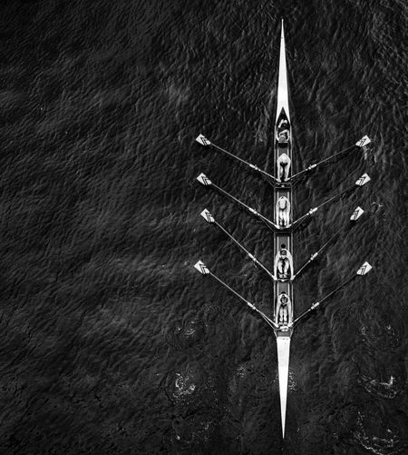 Blackandwhite Canoe From Above  High Angle View Lake Rowing Sports Team Water Market Bestsellers November 2016