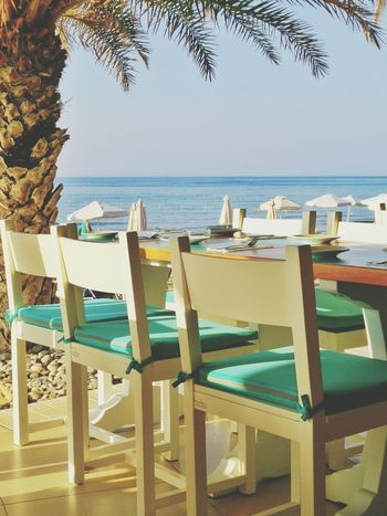 Summer Dinner Laid Table Beach Palm Tree Ocean Ocean View Seaside Enjoying Life Blue Sky