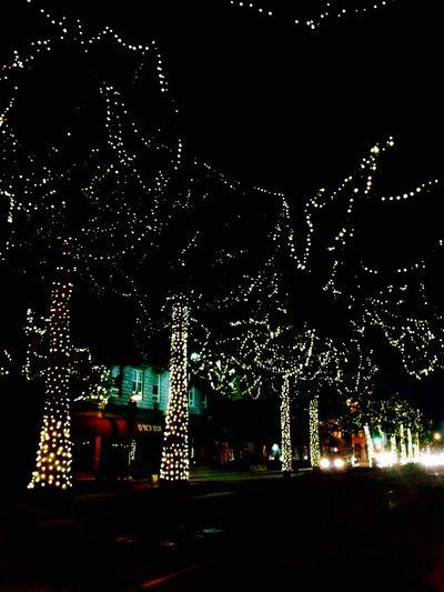 Christmaseve14 Christmas Lights Trees