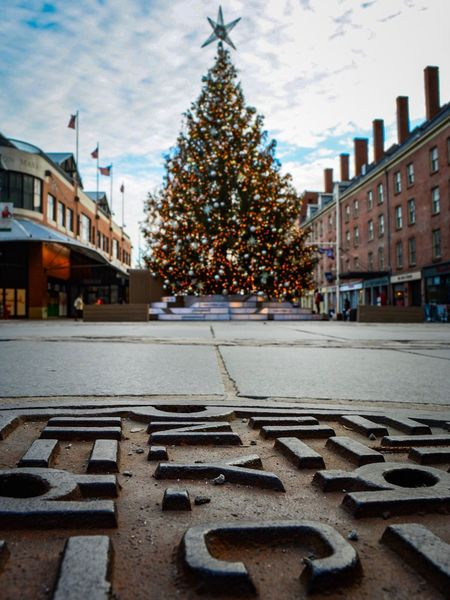 Trees a charm Built Structure Architecture Building Exterior No People Celebration City Christmas Tree Christmas Travel Destinations Tree Outdoors Sky Patriotism Christmas Decoration Day NYC NYC Christmas Lights Lights Holiday Holidays Tree POV