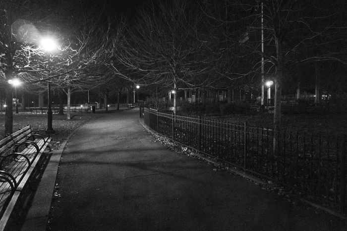 Night Lights. Blackandwhitephotography Blackandwhite Monochrome Light And Shadow Park Fence Parkbenches Lightpoles Trees Limbs Nightphotography Loneliness Lonely Nycphotography TheBronx NYC Nightlife Sony A6000 Project365