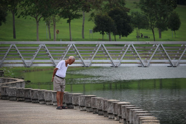 Lonely Pondering Quiet Moments Strolling Aged Elderly Leisure Activity Nature Park Reservoir Water
