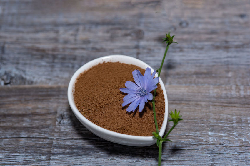 Chicory flower and powder of instant chicory on wooden background. Cichorium intybus. Beauty In Nature Chicory Coffee Chicory Flower Close-up Flower Flower Head Flowering Plant Food Food And Drink Fragility Freshness Growth Herb Indoors  Kitchen Utensil Nature No People Petal Plant Spoon Still Life Table Vulnerability  Wood - Material
