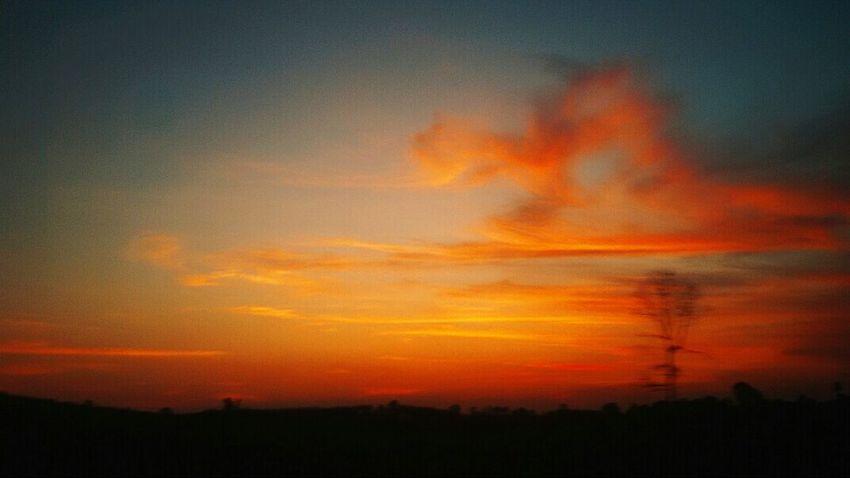 Good night Surrounded By Passion Neverleavemealone Nature_collection Nature Photography Naturebehindthescene Sunset Silhouettes Sunsetmadness gengguakita malaysiansunsetmadness wildwanderlust