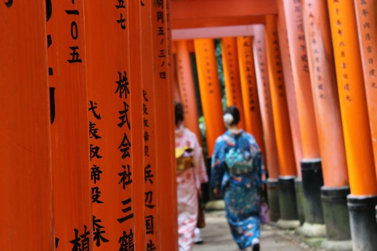 Rear view of women in traditional clothing walking between torii gates