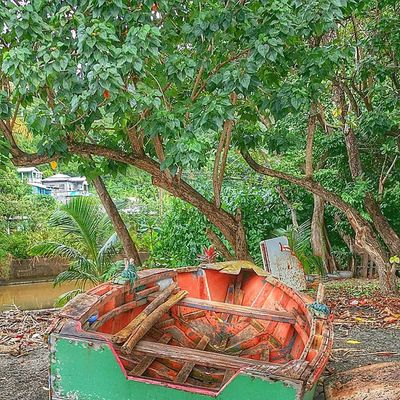 Grenada Ig_caribbean Westindies_landscape Ig_today Natureaddictsun Hdr_elite Hdr_beautiful_landacapes Galaxynote3 Bushments