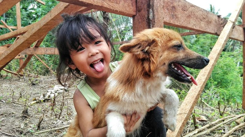 Delight  Dog Fun Toothy Smile Cute Happiness Outdoors Mouth Open Cheerful Young Animal EyeEmNewHereEyeemphoto EyeEm Gallery EyeEm Best Shots Exeptional Photographs Playing Buddies Tongueout The Portraitist - 2017 EyeEm Awards