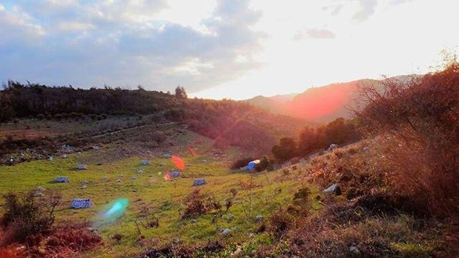 ريف اللاذقية .. تصوير 📷 @ayhm_abdulwli ب 20/1/2015 _____________ Syria  Lattakia Spiring Summer Photooftheday Photo سوريا اللاذقية غروب Livelovesyria