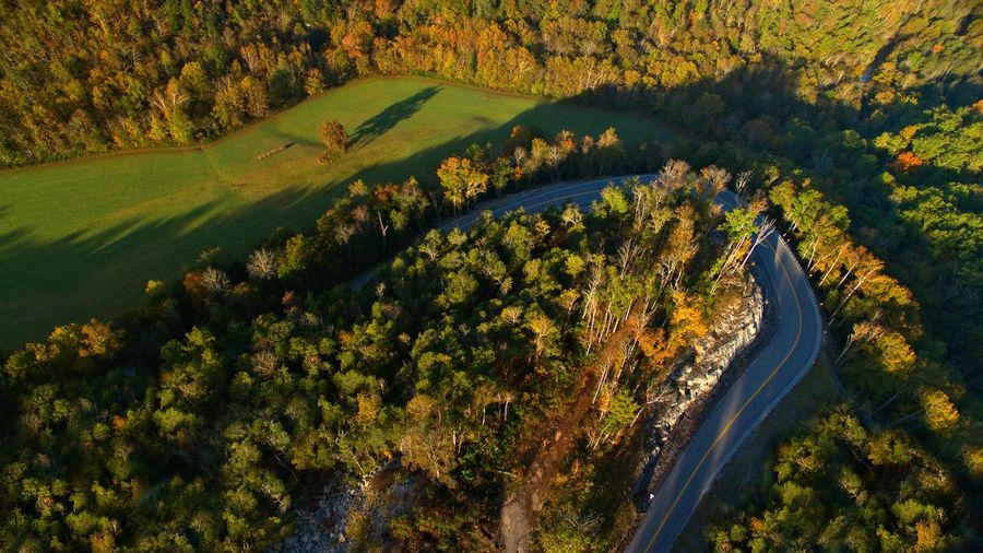 Aerial view of winding road through forest at sunset