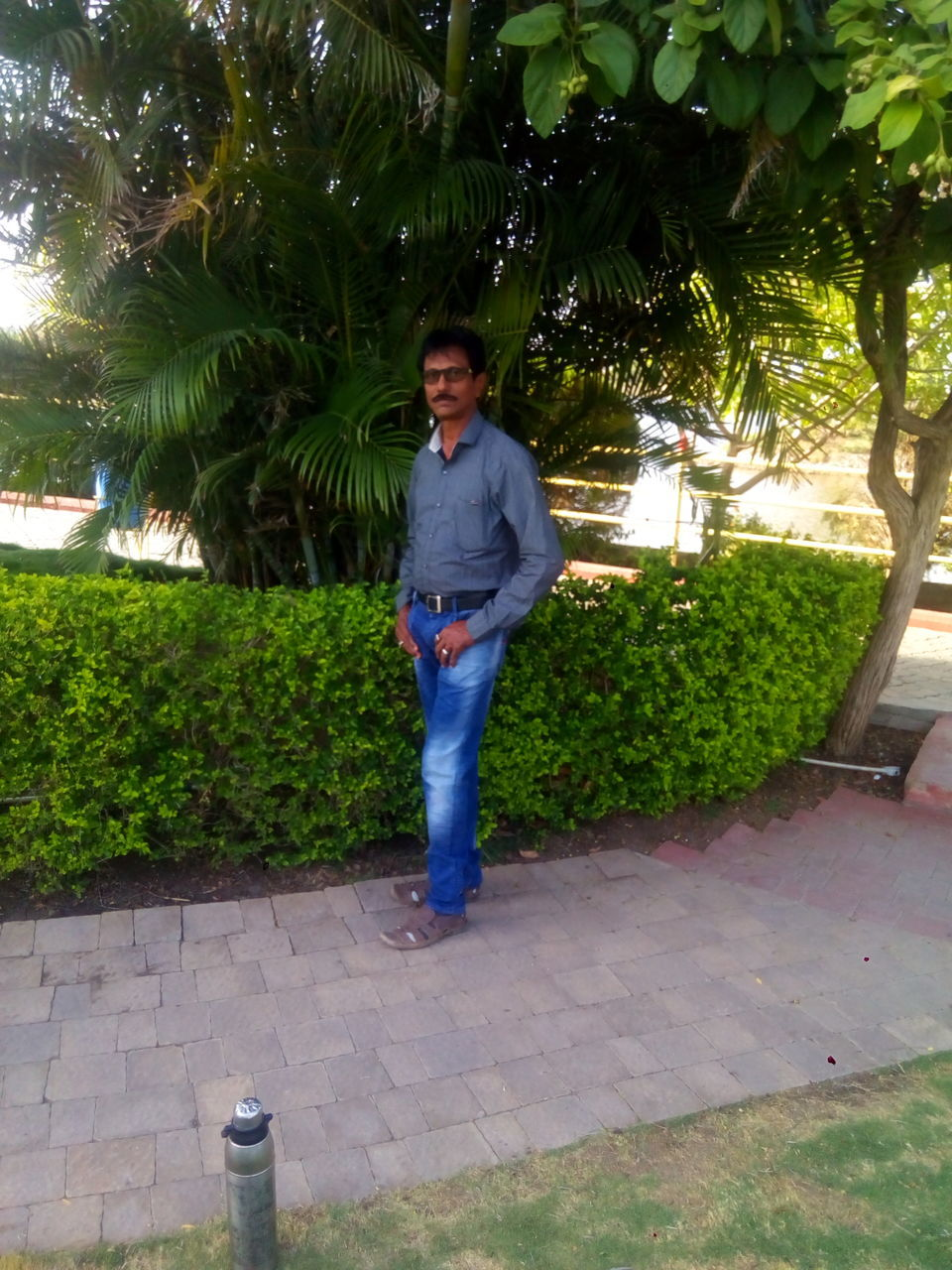 looking at camera, portrait, standing, one person, tree, casual clothing, real people, outdoors, front view, growth, full length, hands in pockets, smiling, day, plant, nature, young adult, people, adult