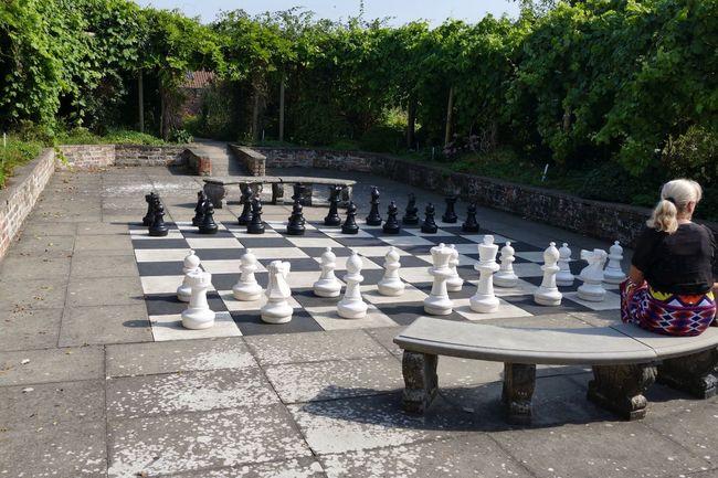 Chess Chessboard Chesspieces Garden Games Outdoor Games Formal Garden Flowers, Nature And Beauty Flowers,Plants & Garden Solitude