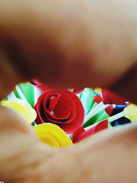 Handcraft Beauty! Colorful Color Portrait Timepass Clicks Flower Paper Flower