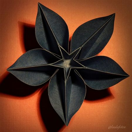 Carambola (Carmen Sprung) folded by me Flower Origami Photography Picoftheday Paperartist Papercraft Taking Photos Art