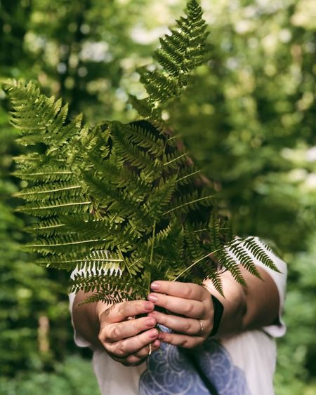 Midsection of woman holding leaves over face